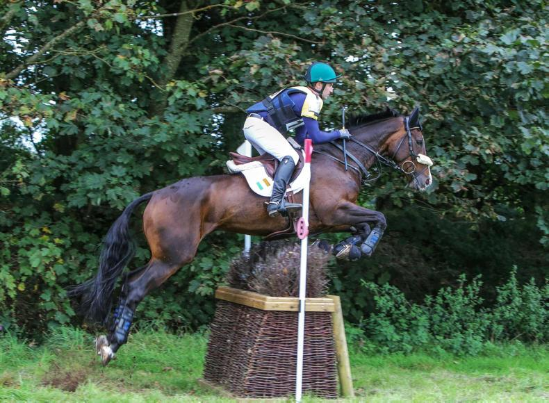BALLINDENISK:  CIC** win icing on the cake for Glynn