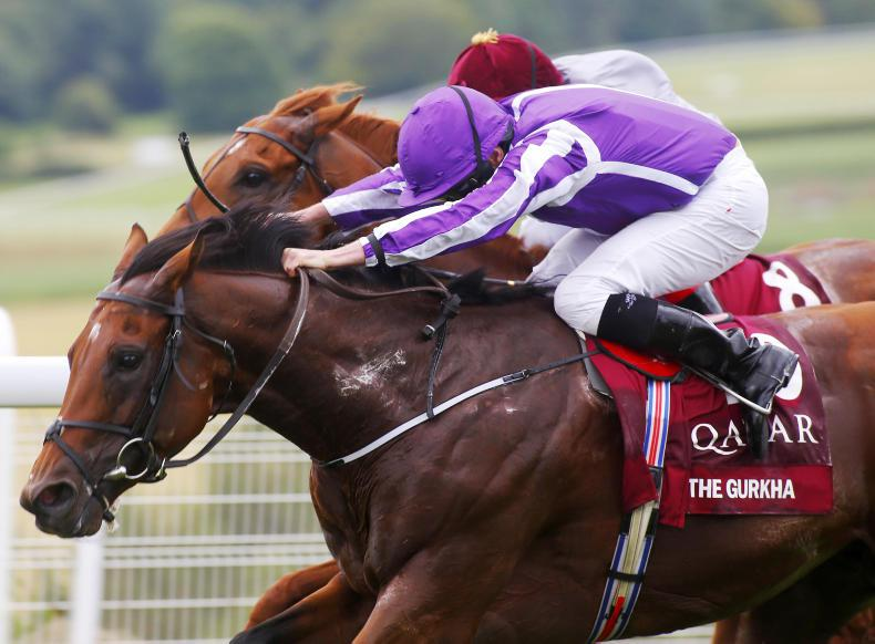 The Gurkha retired to Coolmore in 2017