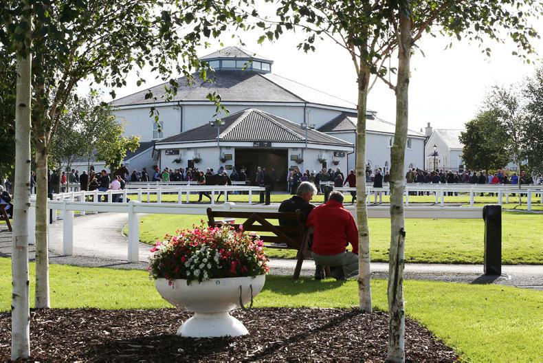 TATTERSALLS IRELAND: Sharp fall in average price and clearance rate