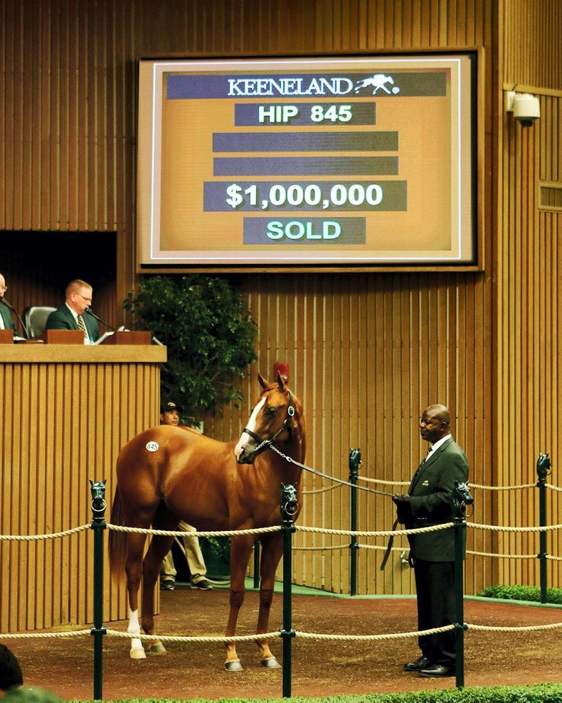 Keeneland remains steady as sale come to an end