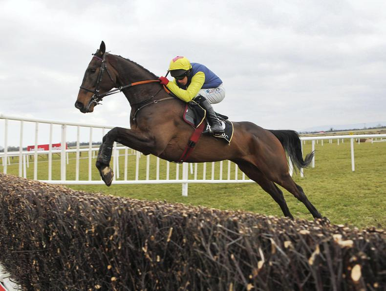 NAVAN SATURDAY PREVIEW: Realt Mor looks likely