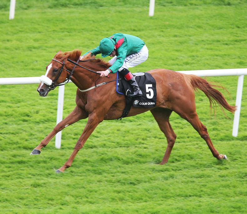 CURRAGH PICK 6: Curragh Pick 6 to come in beyond €1 million
