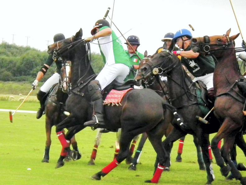 South Africa dominate international charity polo event