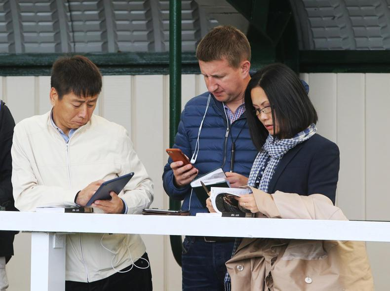 GOFFS ORBY SALE:  Chinese owner Zhang Yuesheng was active at Goffs