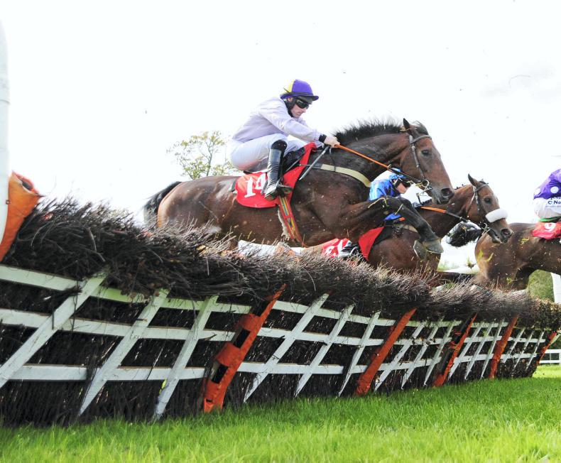 GOWRAN FRIDAY: Walsh spot on with Airlie Beach