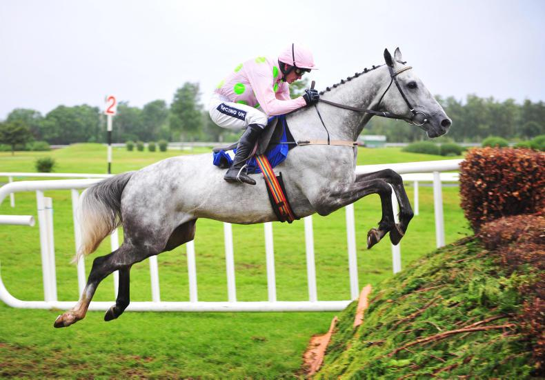 Ballycasey fires for Willie Mullins to take Gowran spoils