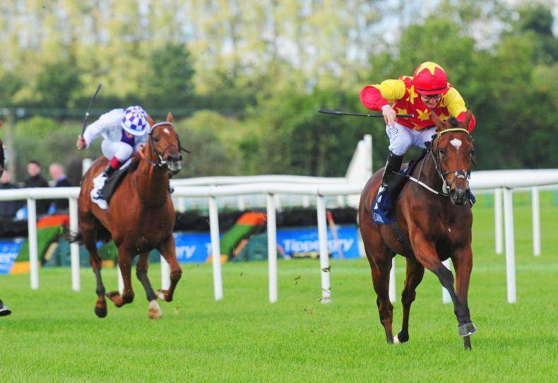 TIPPERARY SUNDAY: Jet Setting home on her ground