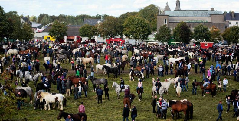 Buyers on the hunt for bargains at Ballinasloe
