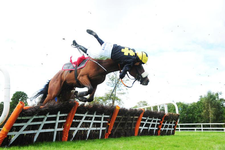 PICTURE DESK: All the action from Dundalk, Gowran Park, Chantilly and more