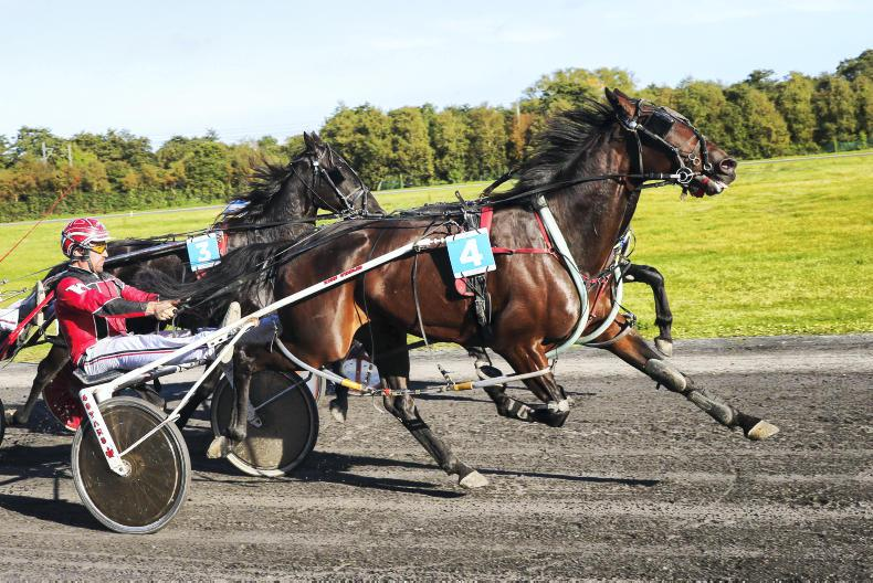 HARNESS RACING:  Kane jets to Memorial win