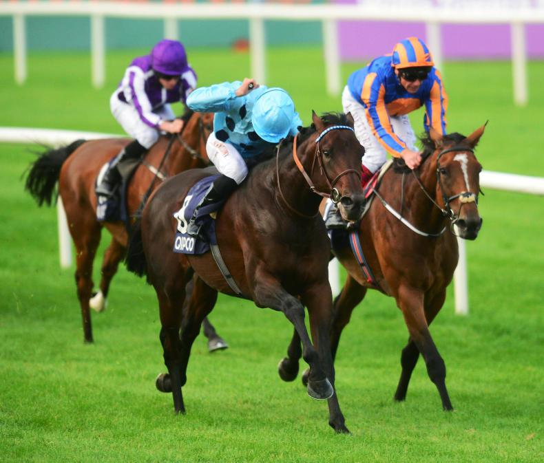 QIPCO BRITISH CHAMPIONS DAY: Almanzor and Found duel again