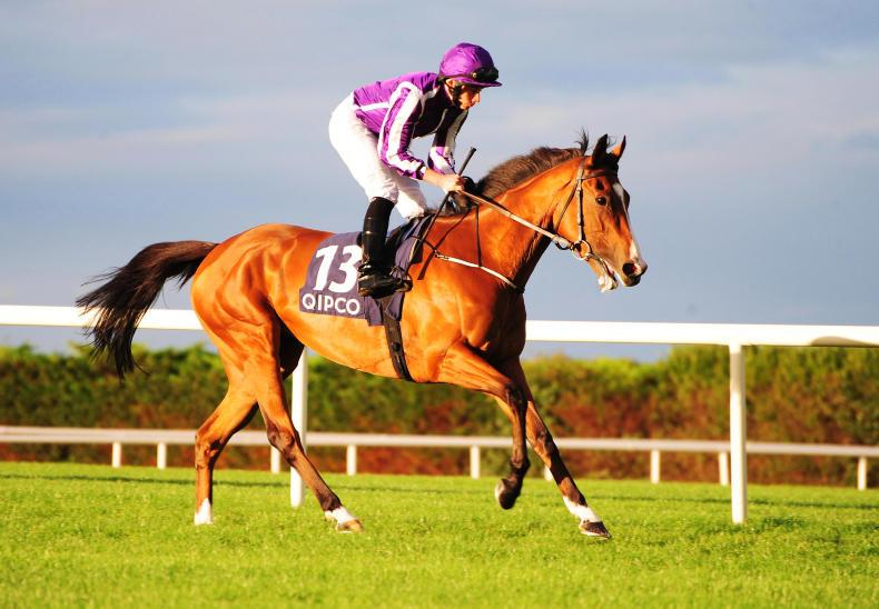 Minding declared against star colts in QEII at Ascot