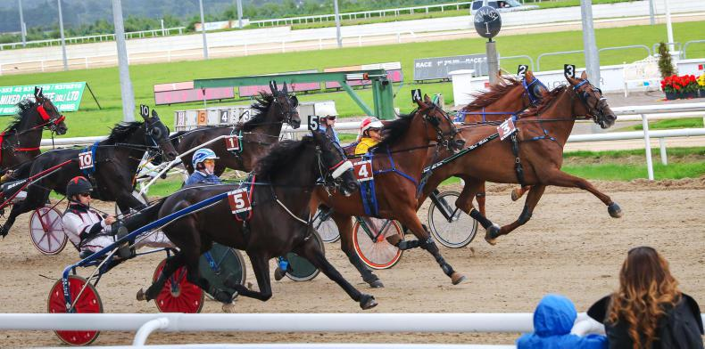 HARNESS RACING: Momentous day for harness racing