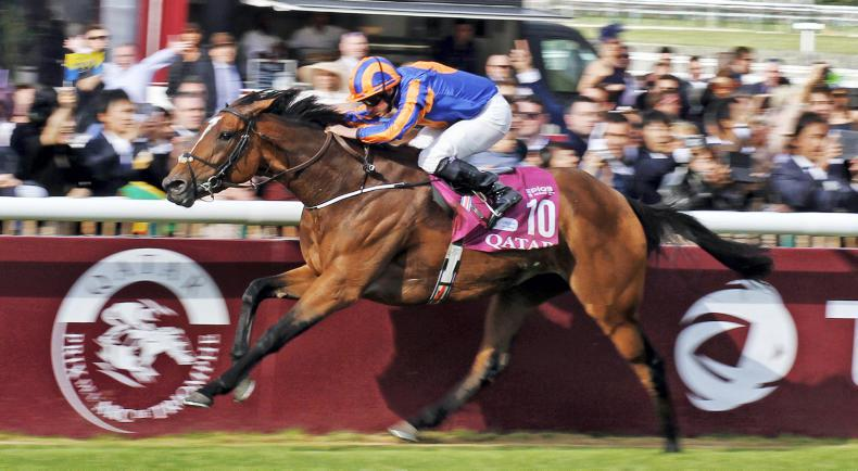 DONN McCLEAN: British Champions Day boasts impressive line-up