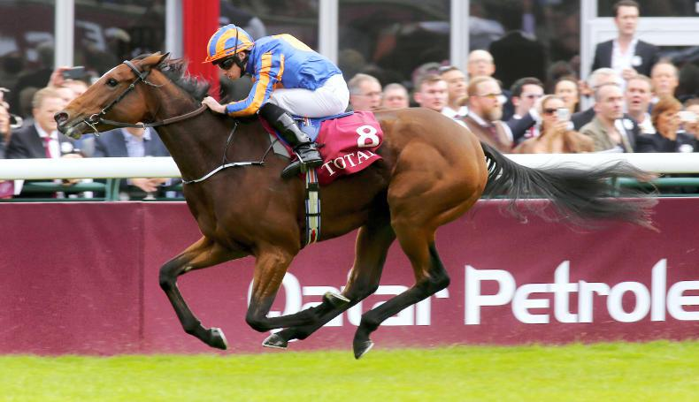Aidan O'Brien praise for Arc victor Found ahead of Champion Stakes quest