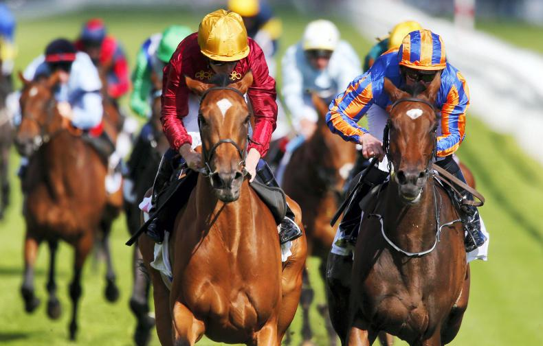 Fascinating Champion Stakes can go to undervalued Rock