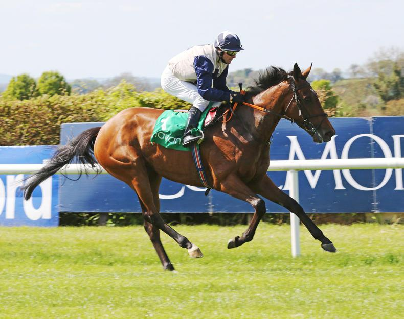 SIMON ROWLANDS: Laganore from last to first