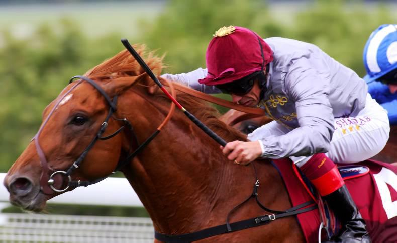 Hugo Palmer reveals Galileo Gold to stay in training