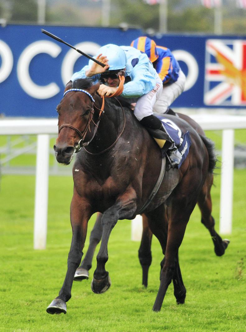 BRITISH CHAMPIONS DAY: Almanzor the almighty