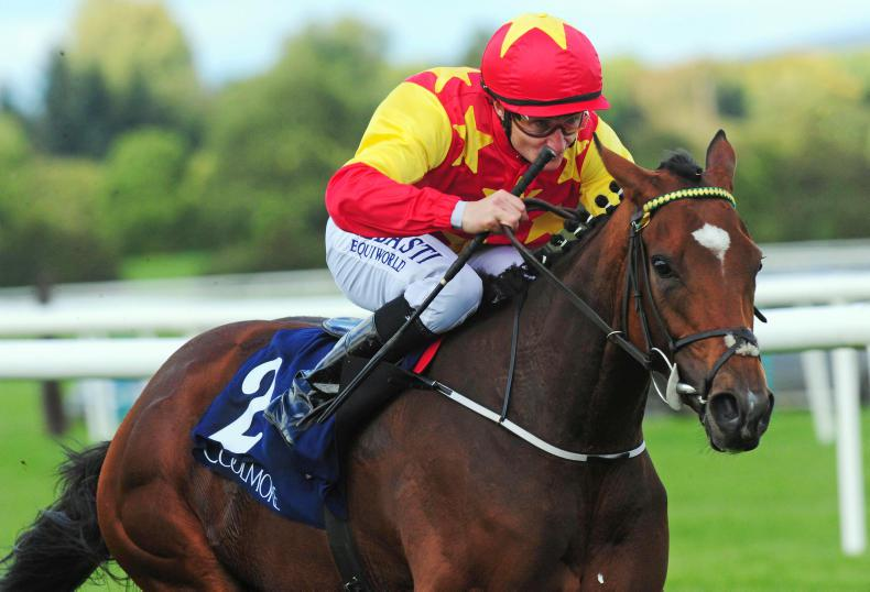 Adrian Keatley pondering French outing for Jet Setting