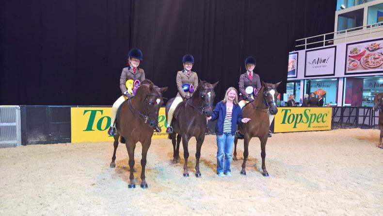 Sherrard leads Irish pony achievements at HOYS