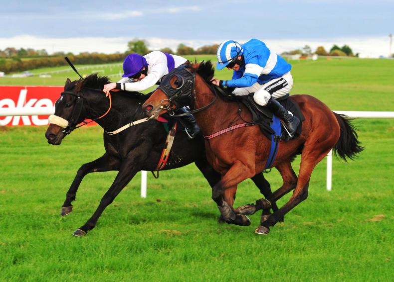 THURLES THURSDAY: Plotting Shed finds good form
