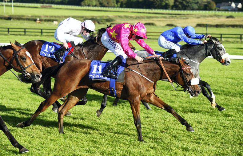 NAAS SUNDAY: Trevanna caps lucrative day for Hayes