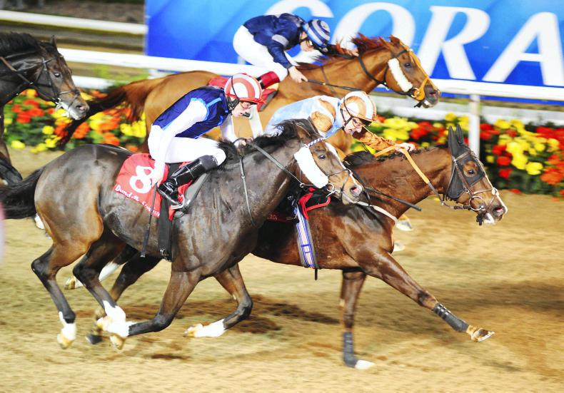 DUNDALK FRIDAY: Caspian lands Mercury in record-breaking style