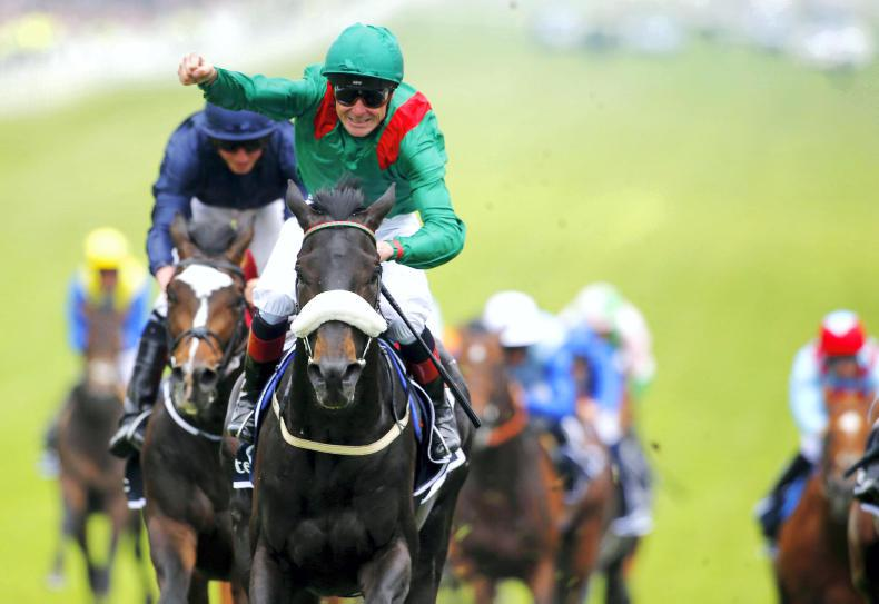 Harzand retired to stand at Gilltown Stud