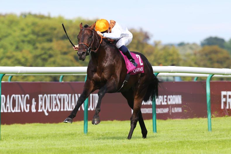 Vadamos retired to stand at Tally-Ho Stud