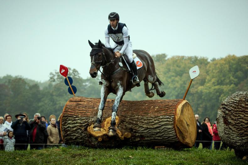 Selle Francais claims breed victory