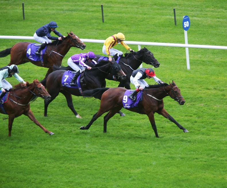 LEOPARDSTOWN SUNDAY: Weld filly Making Light of the boys