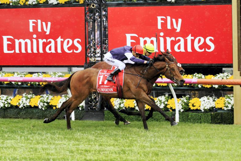 VIDEO: Heartbreak for Irish horse in thrilling Melbourne Cup finish