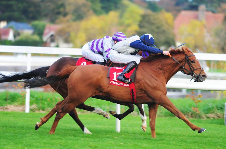 LEOPARDSTOWN SATURDAY: Martin on target with Golden Spear