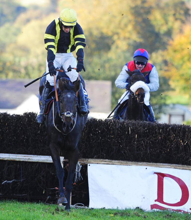 DOWTH HALL SUNDAY: Double for Shark at Dowth carnival