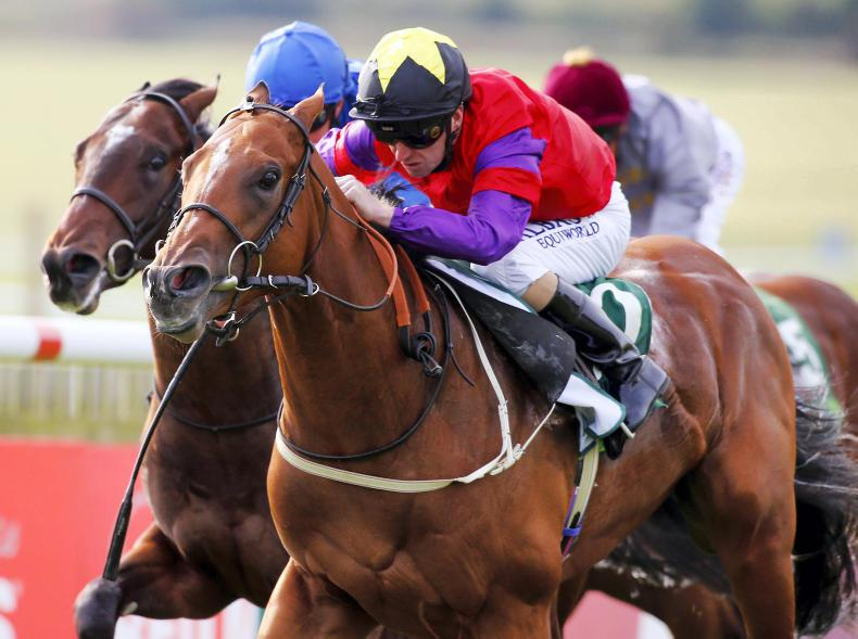Darley publishes stallion fees for 2017