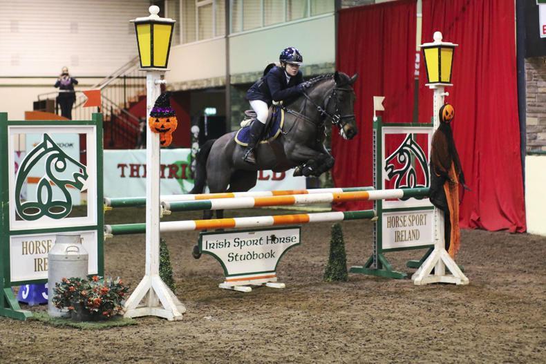 Pony riders crowned in Cavan