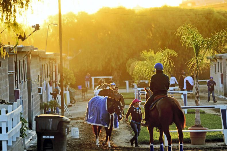 SANTA ANITA SCENES: In the shadows of the San Gabriels