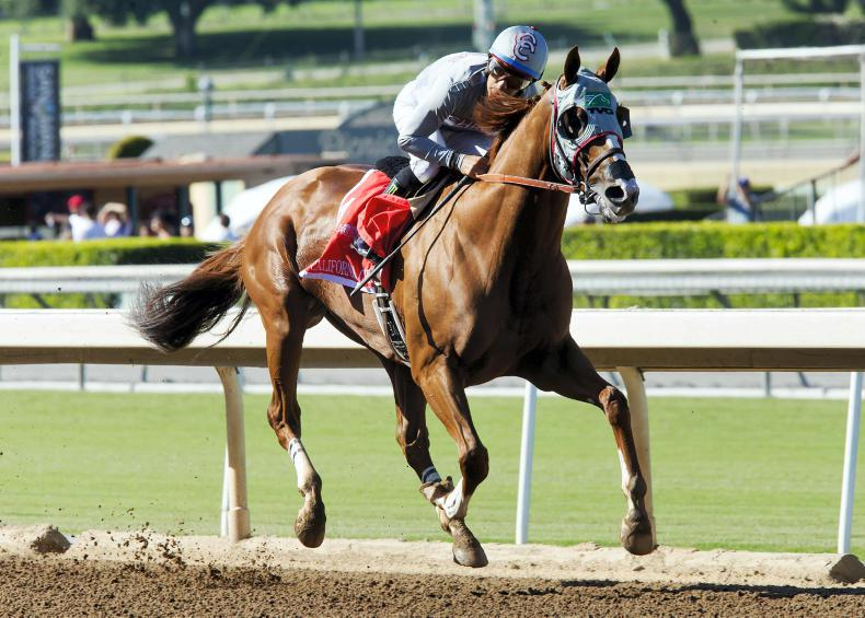 Classic contender California Chrome on cusp of immortality
