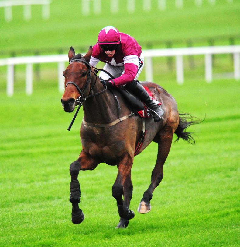 Valseur Lido dazzles under Ruby Walsh to take Down Royal honours