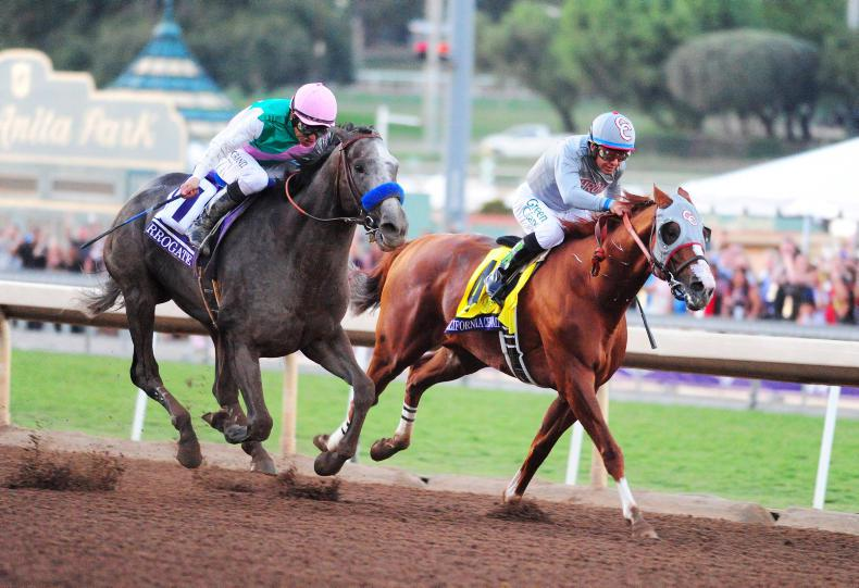 SIMON ROWLANDS: Arrogate prevails in race for the ages