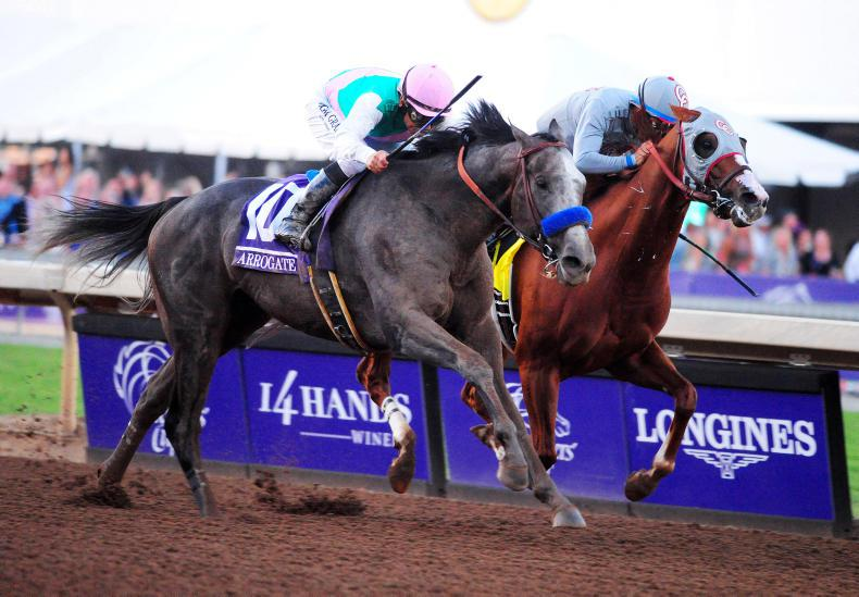 BREEDERS' CUP: Arrogate beats the best to claim the Classic
