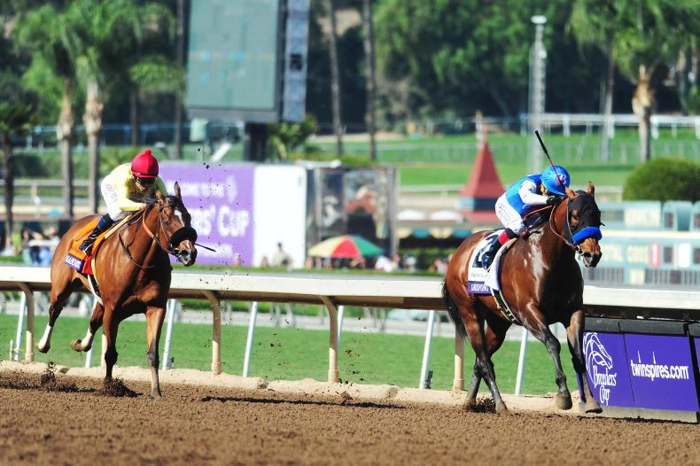 BREEDERS'CUP: Drefong and Finest City deliver