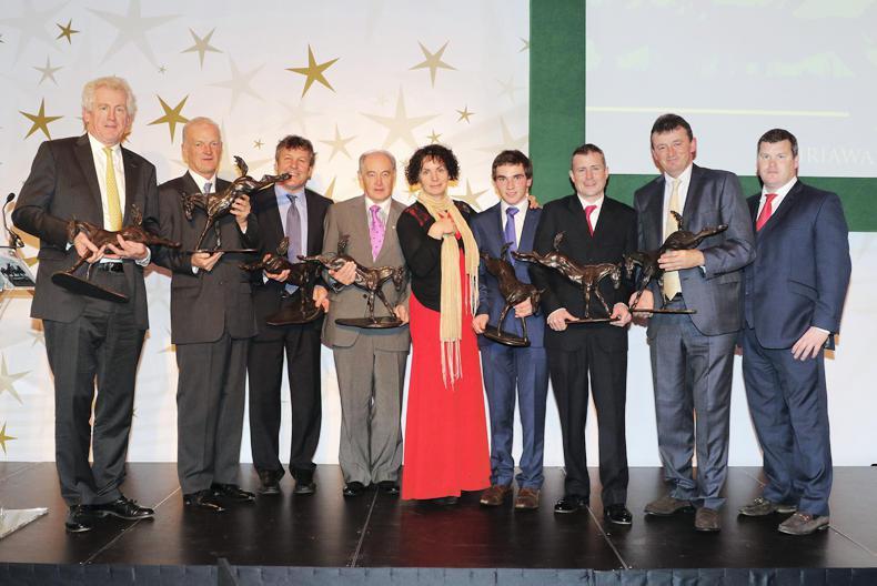 Horse Racing Ireland Award nominations announced