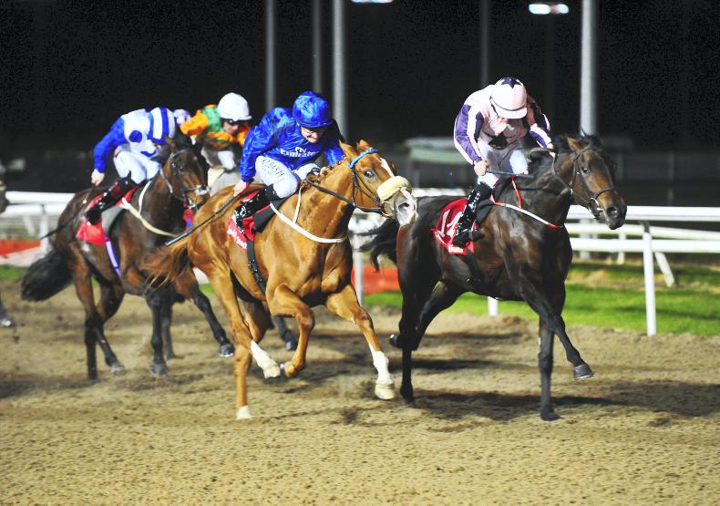 DUNDALK WEDNESDAY: Tooreen Dancer helps Lordan to 101/1 double