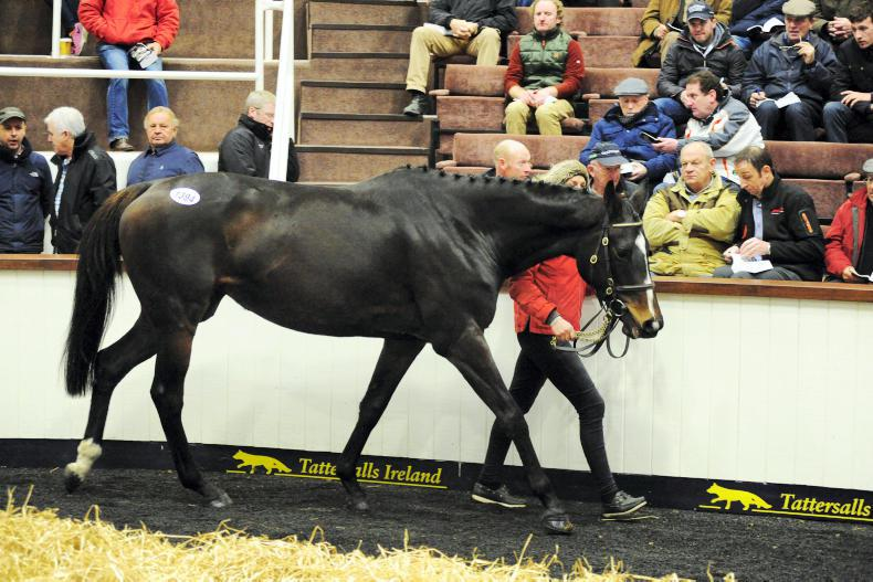 SALES: Valyssa Monterg, in foal to Shantou, tops sale