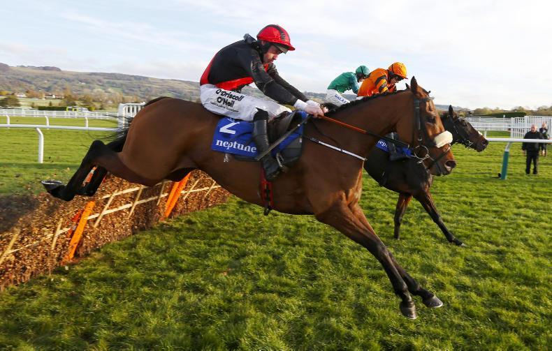 BRITAIN: Peregrine flies home in winning Run