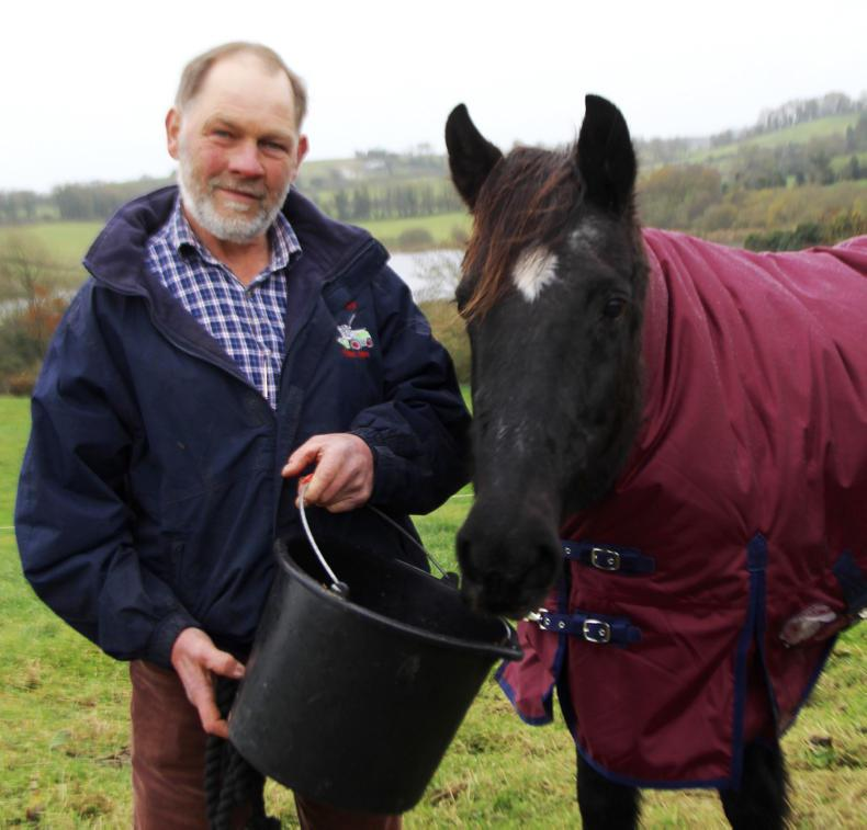 Kells flies flag for farmer-breeders