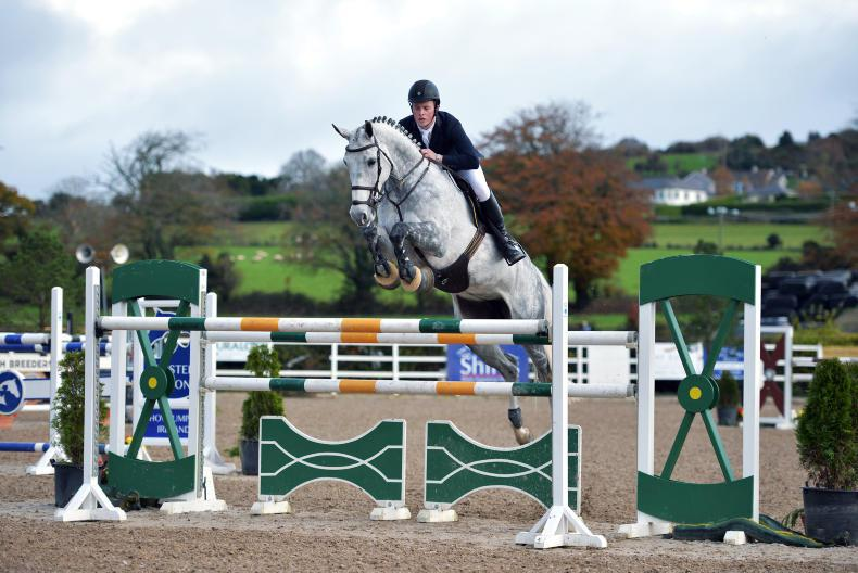 Nickoletta E tops Goresbridge Supreme Sale of Showjumpers  at €460,000