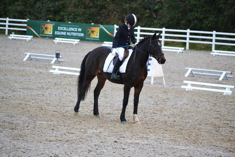 Double delight at JAG Equestrian